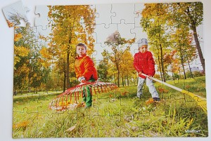 63 piece Raking Puzzle